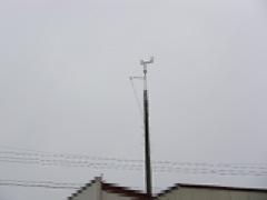 IMGP2736.jpg