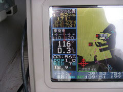 IMGP5248.jpg