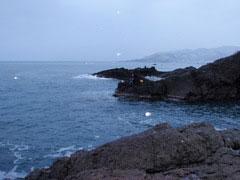 P1120039.jpg