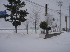 P1130135.jpg